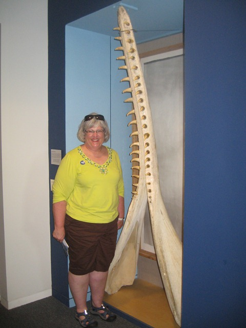 Mary poses beside a jawbone of a whale at the Whaling Museum in New Bedford, MA.