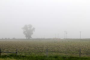 Photo of smoke-filled rural environment