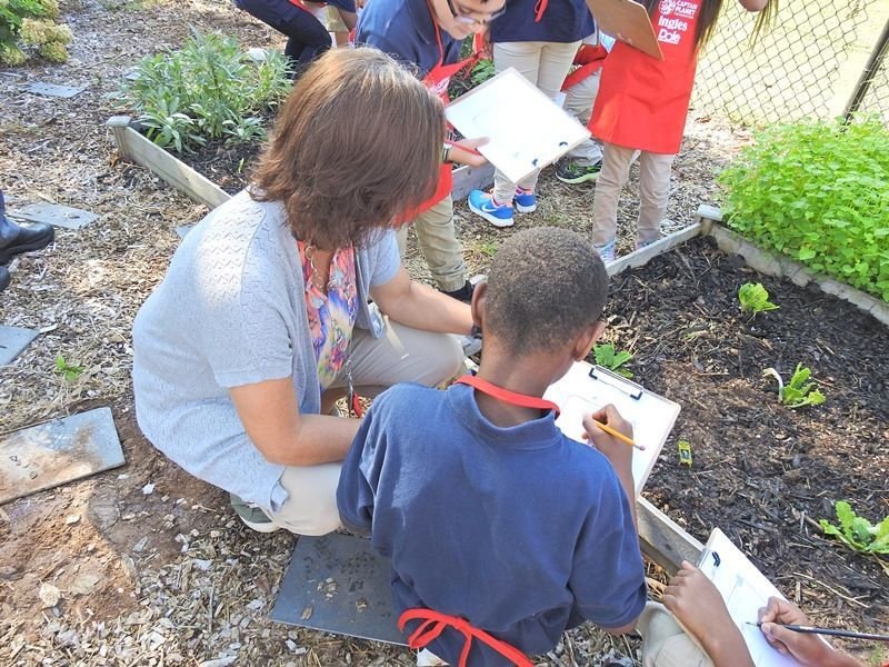 Cherrydale Elementary's Project Learning Garden - Photo 2