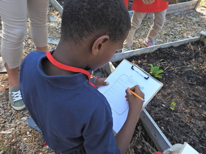 Cherrydale Elementary's Project Learning Garden - Photo 3