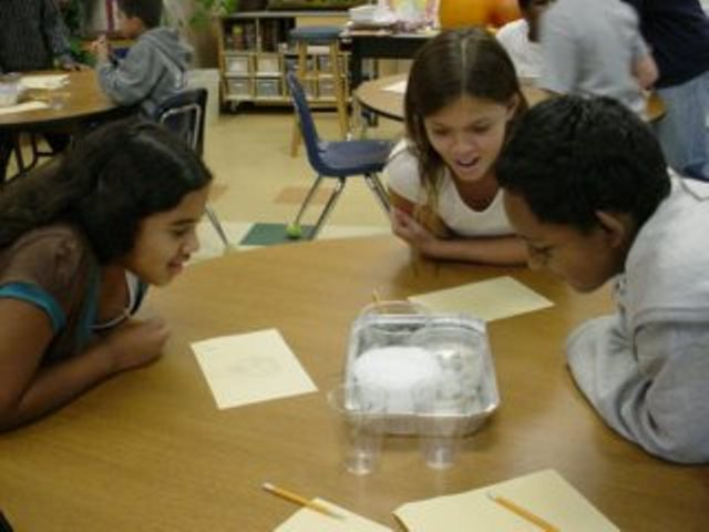 Sharing work and talking about science helps our students understand and learn.