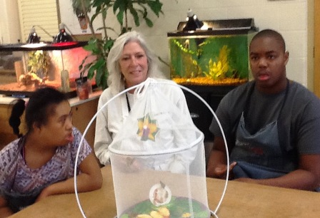 Washington Center students Serenity Watson and Tre Sherard observe butterfly metamorphosis during Adaptive Environmental Science class with teacher Cathy Bush.